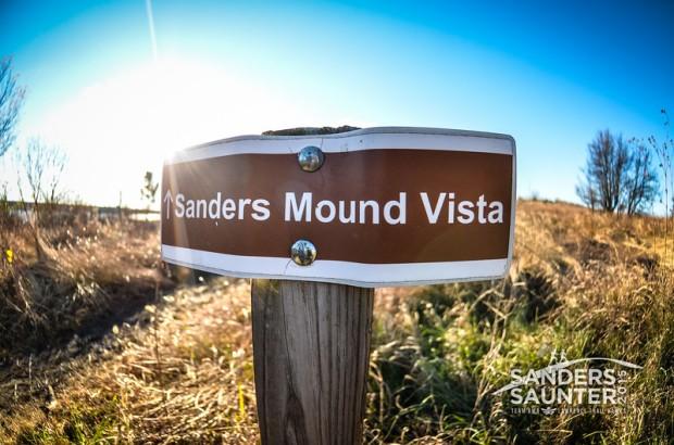 SandersSaunter-2015-9250-L.jpg